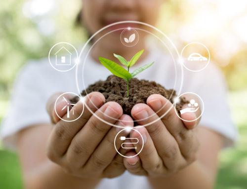 Subvención de 1,5 millones de euros para proyectos de economía circular en el ámbito de los residuos